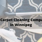 The 5 Best Carpet Cleaning Companies in Winnipeg
