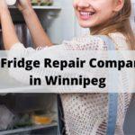 The 5 Best Fridge Repair Companies in Winnipeg