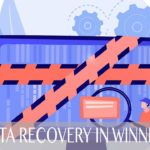 The 6 Best Data Recovery Services in Winnipeg