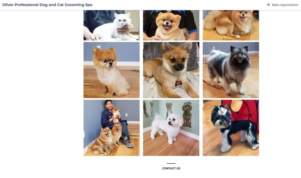 Oliver Professional Dog and Cat Grooming Spa's Homepage