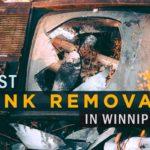 6 Best Junk Removal Services in Winnipeg